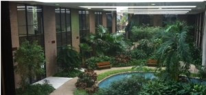 Atrium view from 2nd floor